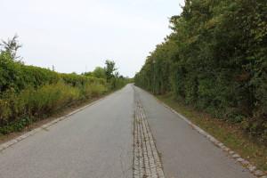 Rad- und Fußweg längs der Øresundsmotorvejen: Mehr Platz für Radler