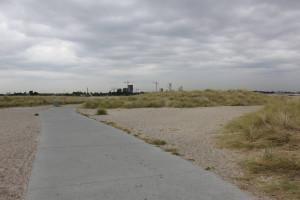 Dünenlandschaft im Amager Strandpark