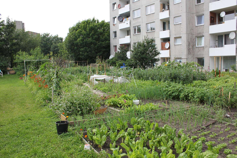 Internationale Stadtteilgärten Hannover/Sahlkamp, 2012