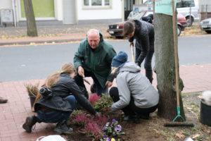 Stadtverschönerung im Kleinen: Auf einer Baumscheibe werden Blumen gepflanzt