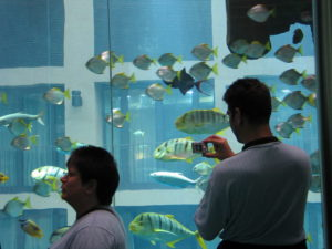 Aquadom beim Sealife Berlin, Berlin, 2007