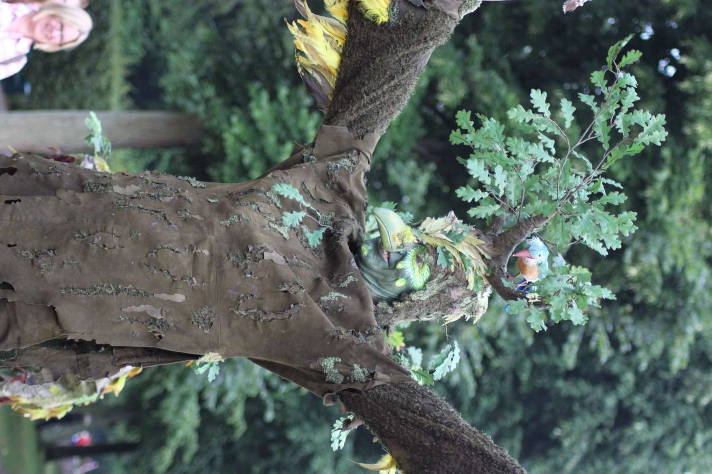 Pantao - Vogelbäume, Kleines Fest, Hannover, 2015