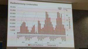 Lindenallee, Potsdam: Mit Asphalt statt Kies doppelt so viele Radfahrer im Sommer und dreimal so viele im Winter