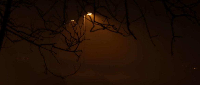 Nebel im Sahlkamp, Hannover, Neujahr 2020